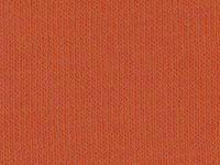 5888 PAPAYA FRESH (OSCURO)