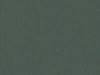 5954 LAGO DRY (MEDIO)