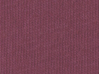 5961 ASTROMELIA (OSCURO)