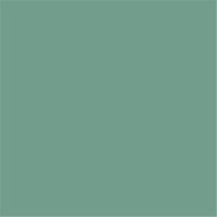 4643 LIGHT GREEN (OSCURO) 16-5815 TCX