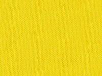 5540 AMARILLO BGT (OSCURO)